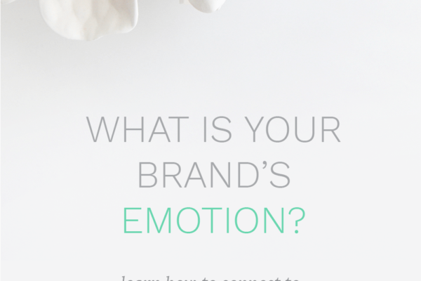 branding, emotional branding, successful branding, branding with emotion, business, small business, women entrepreneurs, mompreneurs