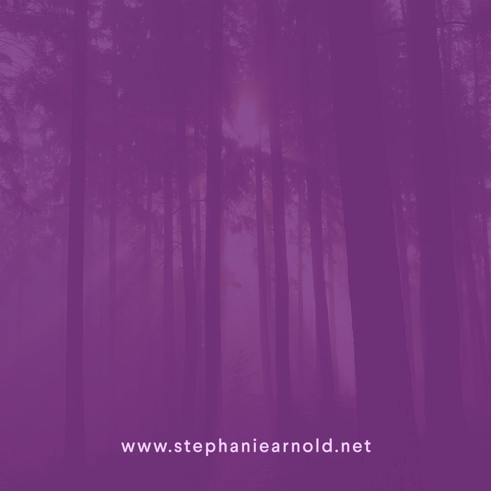 stephanie arnold, website design, web design, branding, graphic design, brand identity, web development, social media graphics, content creation, social media